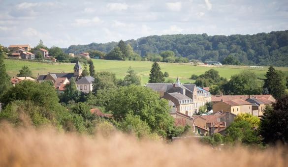 Splendid landscape of the village of Torgny